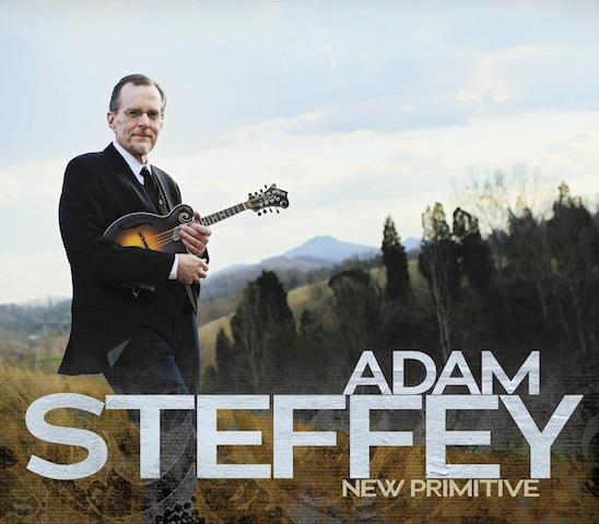 Adam Steffey's New Primative