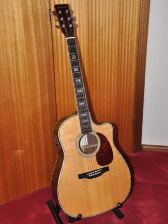 De Gruchy Guitar